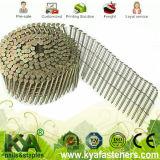 Chiodi galvanizzati del pallet per tetto, recintanti