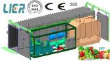 تجاريّة نباتيّة [بر-كولينغ] آلة /Vacuum مبرّد