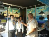 Waterdichte LEIDENE van de Prijs van de fabriek IP65 Vloed Lichte 10W 20W 30W