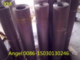 Het roestvrij staal Geweven Netwerk van de Draad voor Filteration