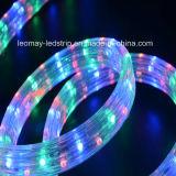 IP65はセリウムRoHSとのY2 LEDロープライト直売を防水する
