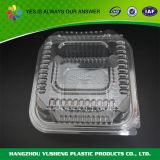 Rectángulo plástico modificado para requisitos particulares de los pasteles del acondicionamiento de los alimentos de Dispossable