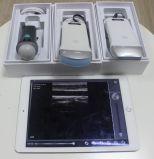 Hbw-2L iPad iPhone Apple 초음파를 위한 무선 선형 초음파 탐침 초음파 검사
