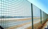 PVC Coated Eurofence (фабрика Anping)