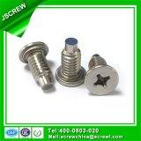 Parafusos especiais do cliente do aço Ss304 inoxidável