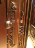 Farben-Edelstahl-Tür für Haus (S-3038)