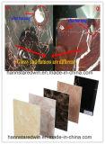 3D Interial 훈장을%s 대리석 PVC 장
