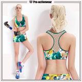 O OEM presta serviços de manutenção a Shorts das mulheres dos Shorts dos esportes da venda por atacado da etiqueta confidencial