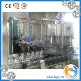 Imbottigliatrice di vetro per la bevanda gassosa