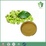 Gewicht-Verlust-natürlicher grüner Kaffeebohne-Auszug ChlorogenAcids50%