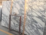 Decorazione della stanza da bagno del marmo italiano di bianco di Arabascata