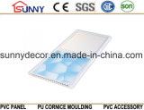 Tuiles de plafond, matériaux de construction en plastique Plafond en PVC de haute qualité, panneaux de plafond en PVC au lieu des planches de gypse