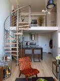 Escaleras de cristal de interior/escaleras espirales de interior