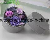 A caixa redonda pequena 3 in-1 preservou a flor fresca