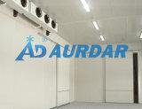 工場価格の高品質の冷凍部屋の低温貯蔵部屋
