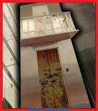 Vorbildlicher schmaler Pfosten des HaarstrichEdelstahl-304 für Passagier-Aufzug