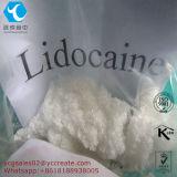 Lidocaine-Hydrochlorid für myokardiale Infarktbildung in der Kammerarrhythmie CAS: 73-78-9