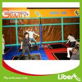 Большой крытый гимнастический Trampoline с шариком доджа в парке Trampoline