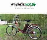 En19154를 가진 강철 프레임 전기 자전거