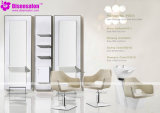 De populaire Stoel Van uitstekende kwaliteit van de Salon van de Kapper van de Spiegel van het Meubilair van de Salon (2033E)