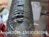 Venta caliente Bto-22 galvanizado sumergido caliente 450, 600, 700, 900, alambre de púas de la maquinilla de afeitar de la concertina de 960m m