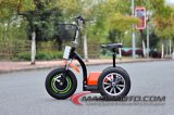 Motorino elettrico elettrico di vendita pazzesco variopinto Es5015 di Trike Crowler del motorino della Cina da vendere