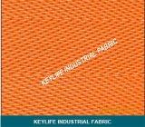 Filtrar Polyester Imprensa Mesh Belt