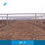 Réseau d'empêchement d'insecte de SPF pour horticole