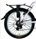 20インチのリチウム電池の電気自転車(LN20R01)