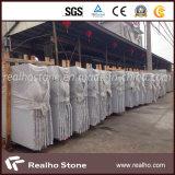 Китайский отечественный сляб гранита G603 от Fujian