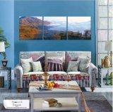 Fabrik-Verkaufs-moderner dekorativer Farbanstrich