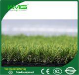 オオハシカッコウ紫外線園芸景色の草の人工的な草の庭の草