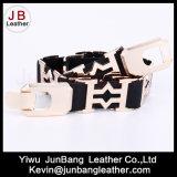 Le plus défunts élastique de mode et courroie en métal dans la qualité pour des femmes