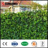 [سونوينغ] جيّدة يبيع طبيعة خضراء بلاستيكيّة اصطناعيّة معدلات سياج خارجيّ