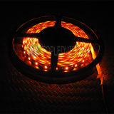 ¡Nuevo! Tiras ambarinas de SMD2835 LED con IEC/En62471