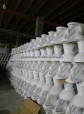 Toletta di ceramica a due pezzi poco costosa di 860 Siphonic