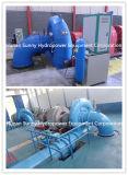 Turbine-Generator Фрэнсис среднего размера гидро (вода) 2.5~4.5 MW/гидроэлектроэнергия /Hydroturbine