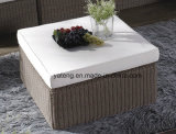 Base di sofà esterna di Lliving della mobilia del nuovo rattan rotondo popolare di disegno semplice (YT188) con il doppio sofà di &3seat