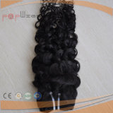 Weven van het Menselijke Haar van Afro van de hoogste Kwaliteit het Krullende, de Inslagen van het Haar, de Uitbreiding van het Haar