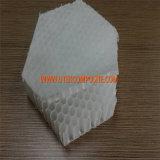 núcleo de favo de mel do Polypropylene de 30mm para FRP