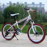Bicicleta de montanha da alta qualidade da venda/bicicleta quentes MTB