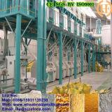 Standard européen 100t/24h Maize Milling Line