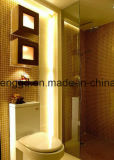 Strumentazione di ceramica Zhicheng di doratura elettrolitica