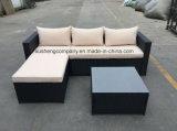 Insieme moderno del sofà del rattan del blocco per grafici d'acciaio del metallo