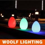 Lampe de table aux oeufs brillant et clair à haute technologie de nouvelle technologie