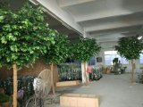Piante di alta qualità & fiori artificiali dell'albero Gu64065054 del Ficus