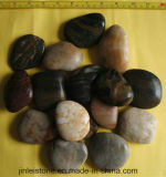 Multicoloured Zwarte Opgepoetste Natuurlijke Cobble van 23cm &Pebble Steen