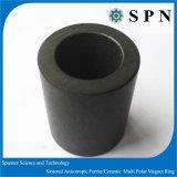 ステップ・モータのためのPermanetの亜鉄酸塩の磁石によって焼結させるリング