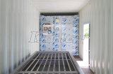 5 tonnellate del contenitore di blocco di ghiaccio che fa macchina con il sistema della gru e della cella frigorifera da vendere