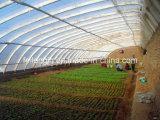 온실 태양 일광실 또는 집